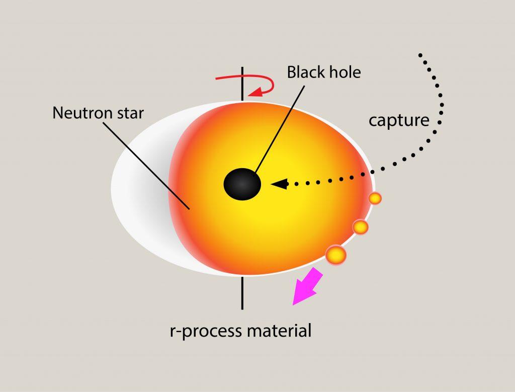 Schwarzes Loch frisst Neutronenstern von innen